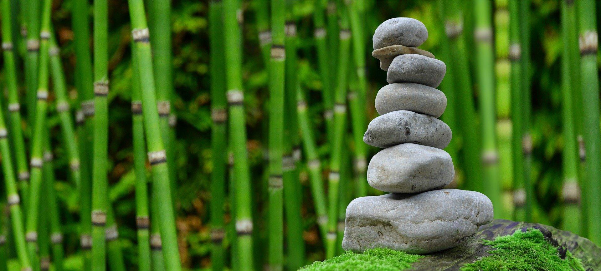 zen performance high performance